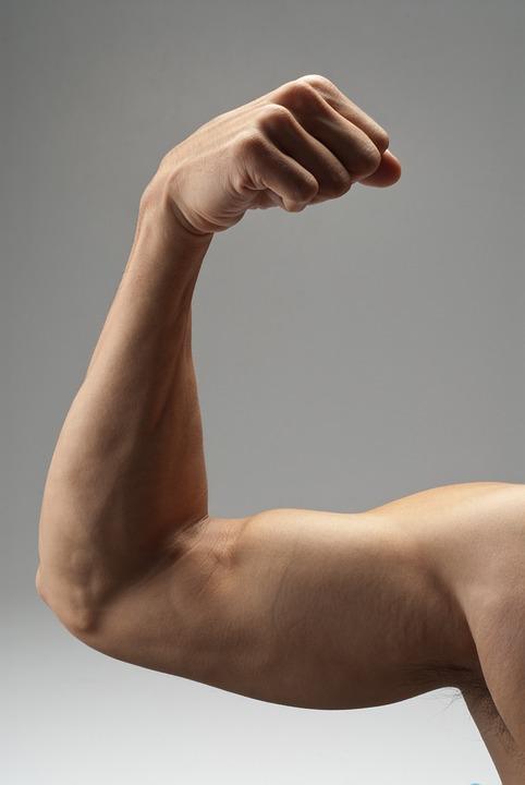 От чего растут мышцы Сколько жиров и углеводов нужно в день